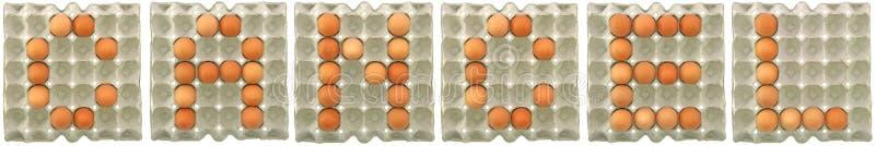 ANNULLI la parola dalle uova in vassoio immagini stock libere da diritti