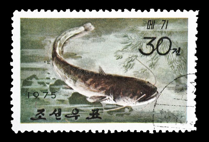 Annullierte Briefmarke gedruckt durch Nordkorea lizenzfreies stockbild