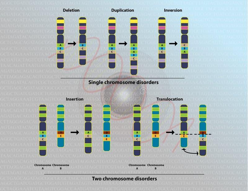 Anomalies chromosomiques illustration libre de droits