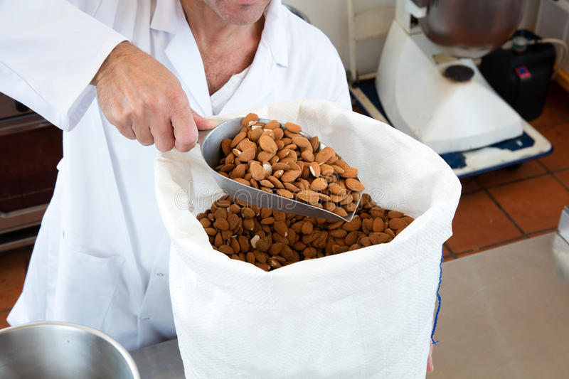 Anonymous male professional hands pouring fresh almonds stock photo