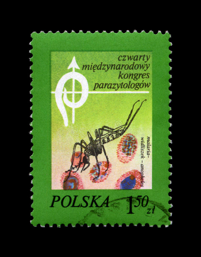 Anopheles Mosquito and blood cells, 4th International Parasitological Congress, circa 1978,. POLAND - CIRCA 1978, AUG 19: cancelled stamp printed in Poland stock photo