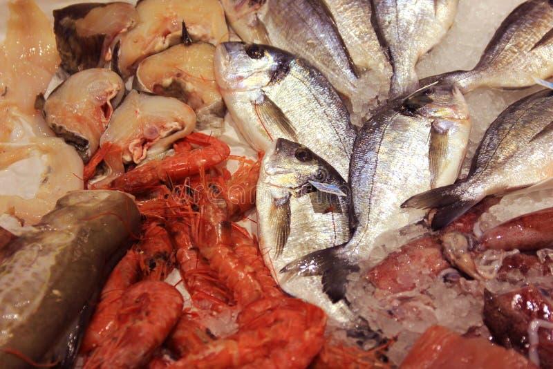 Anordnung der frischen Fische und der Meeresfrüchte auf shopboard lizenzfreies stockfoto