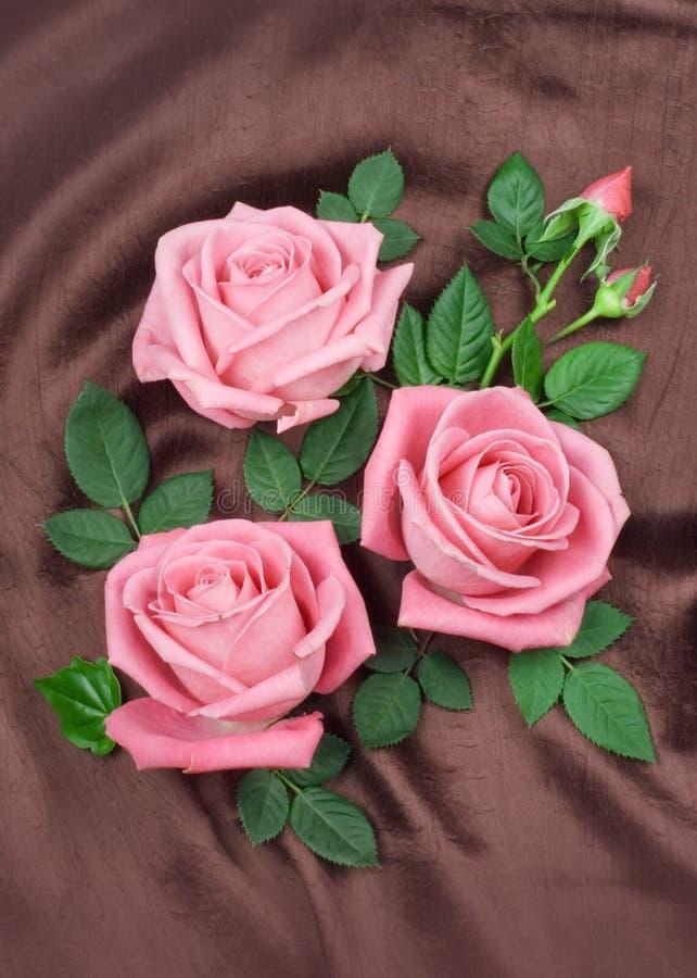Anordnung für rosafarbene Rosen stockbild