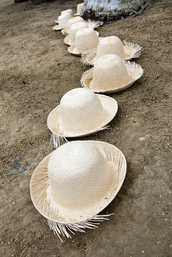Anordnung für Straw Hats stockfotos