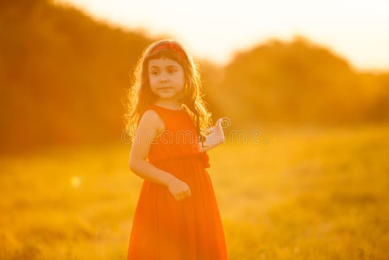 5 anos bonitos da menina na luz de Sun da noite imagem de stock