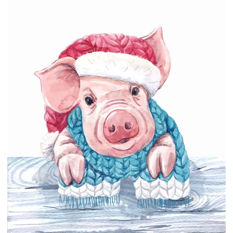 2019 anos do vetor do porco ilustração stock