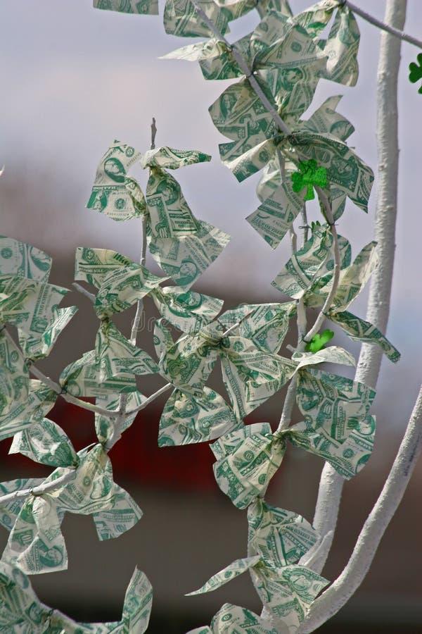 Another money tree royalty free stock photos