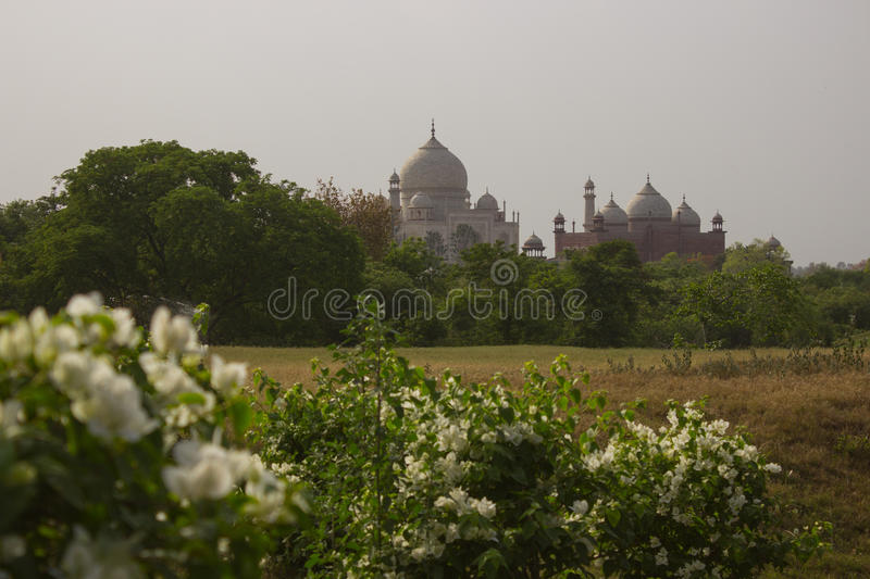 Another side of Taj Mahal royalty free stock photo