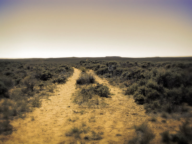 Download Another Wagon Trail Leading To Horizon Stock Image - Image of pioneers, sagebrush: 21075