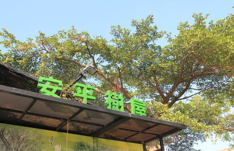 Anping gammalt Tait och företagsträdhus Tainan Taiwan arkivbilder