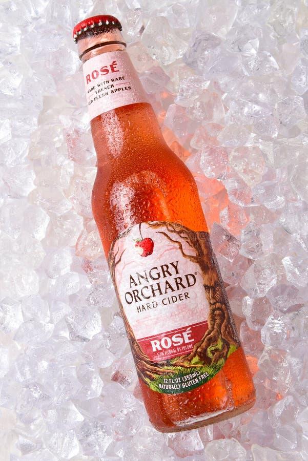 Free Anrgy Orchard Rose Hard Cider Royalty Free Stock Image - 129396996
