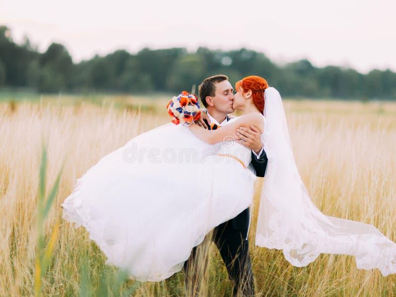 Ansa att bära och att kyssa hans brud i det soliga vetefältet royaltyfria foton