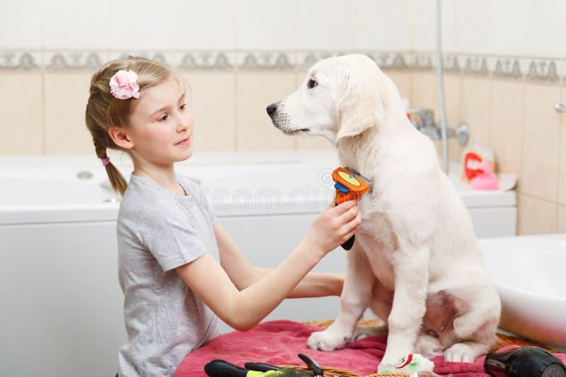 Ansa för flicka av hennes hund hemma royaltyfri foto