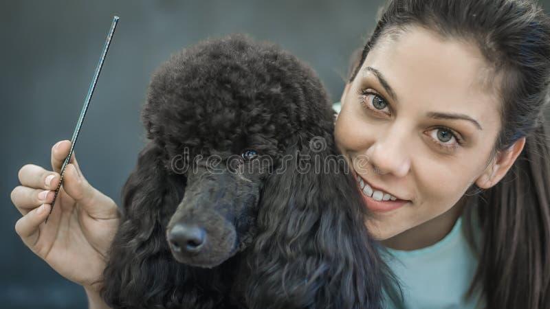 Ansa lite hunden i en hårsalong för hundkapplöpning royaltyfri foto