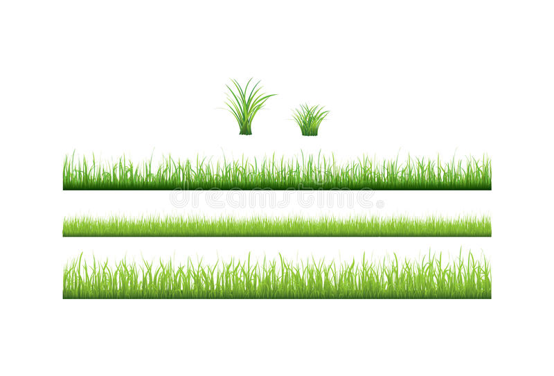 Ansammlung des grünen Grases. Vektor   stock abbildung