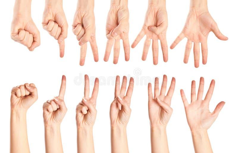Ansammlung Hände stockfotos