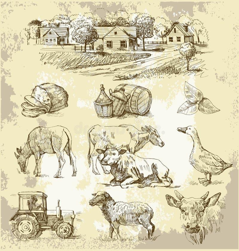Ansammlung-handgemachte Zeichnung des Bauernhofes vektor abbildung