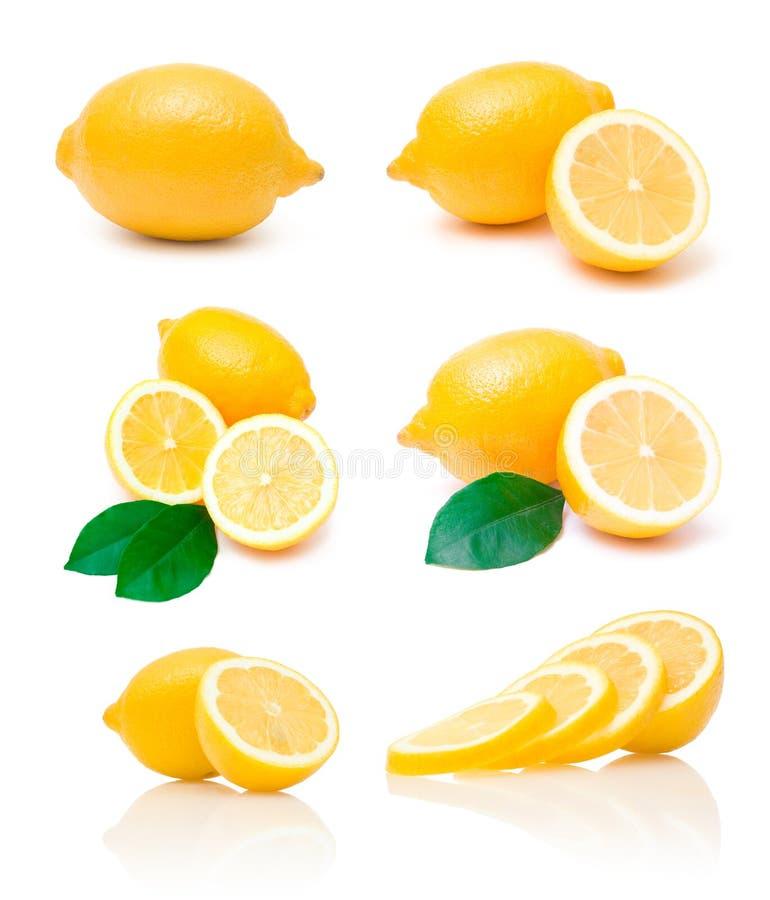 Ansammlung Zitronebilder lizenzfreie stockfotografie
