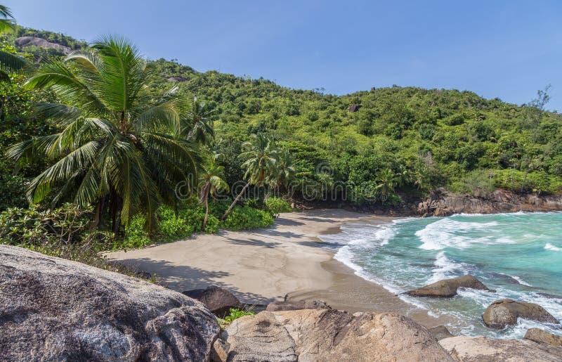 Anse在Mahe塞舌尔群岛的少校海滩 免版税库存照片