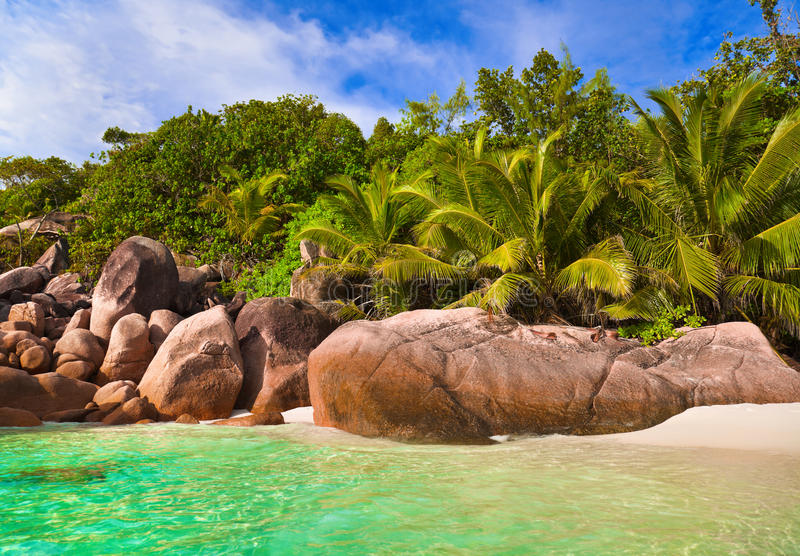 anse海滩拉齐奥塞舌尔群岛 免版税库存图片