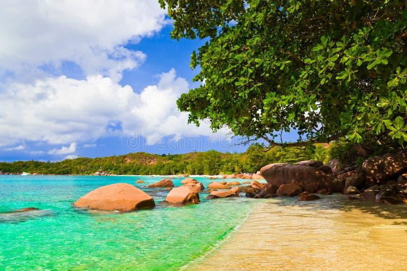 anse海滩海岛拉齐奥praslin塞舌尔群岛 库存图片