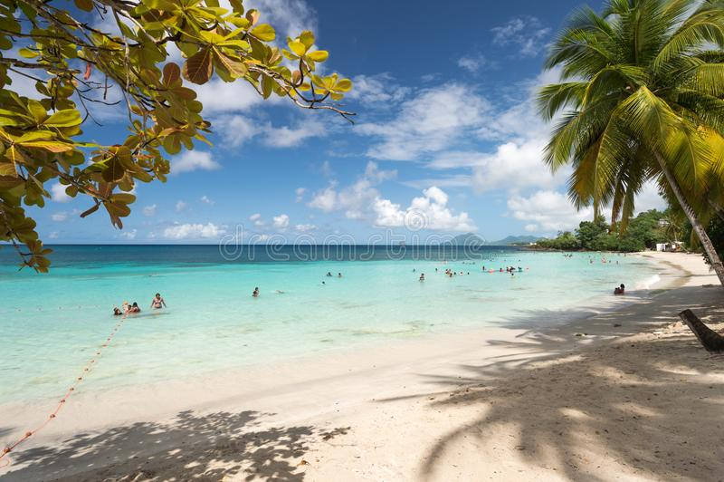 Anse Figuier in Martinique, with Diamond Rock in the distance stock images