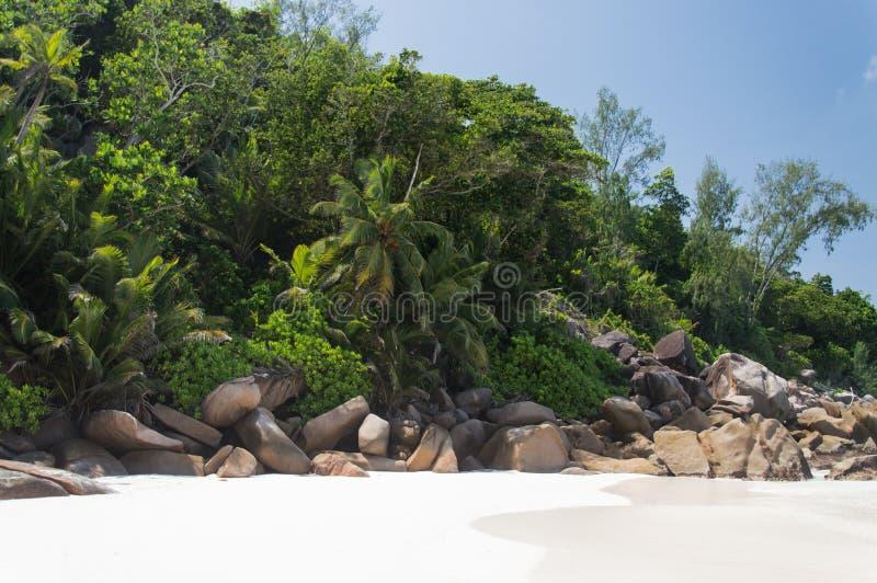 Anse Gouvernement w Praslin, Seychelles zdjęcia stock
