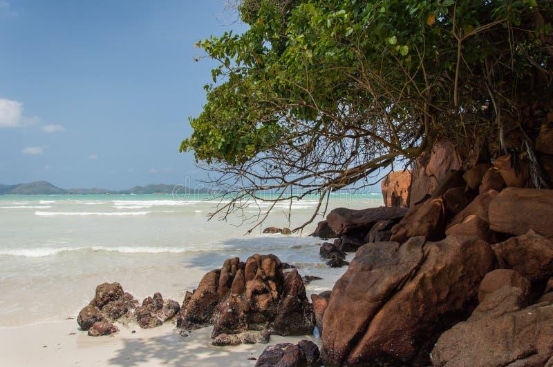 Anse Gouvernement w Praslin, Seychelles zdjęcie royalty free