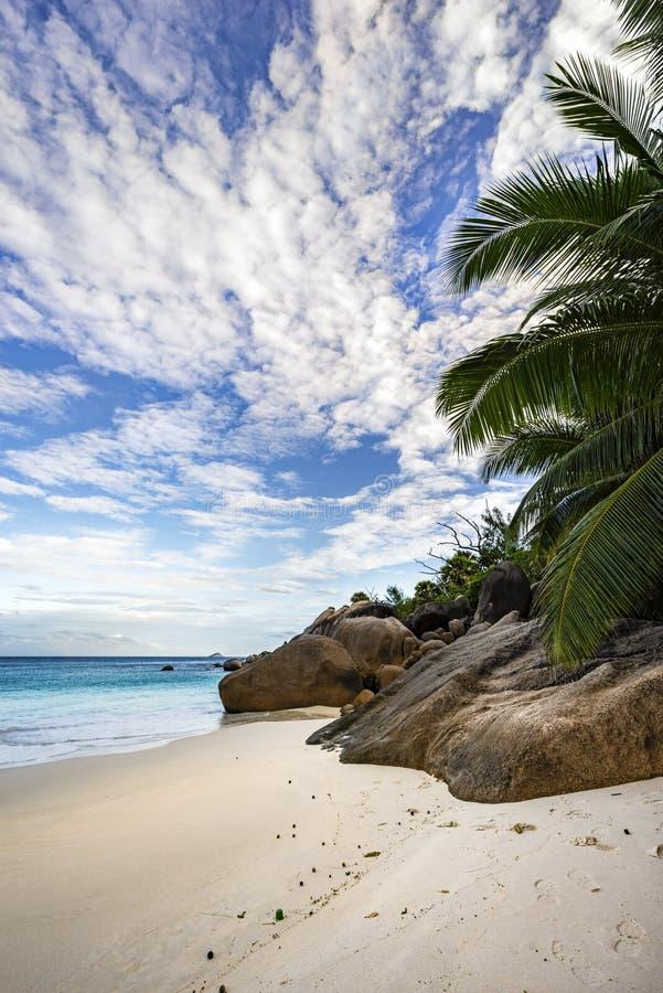 Anse Lazio en la isla del praslin en las Seychelles fotografía de archivo libre de regalías