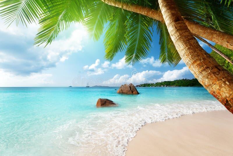 Anse Lazio plaża na Praslin wyspie, Seychelles obraz royalty free