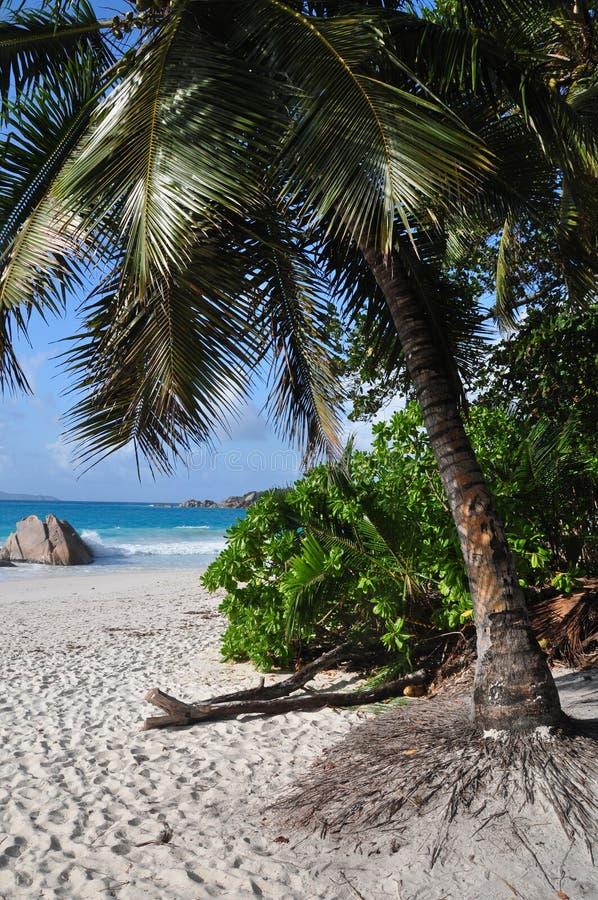 Anse Lazio, Seychelles, isla de Praslin imagenes de archivo