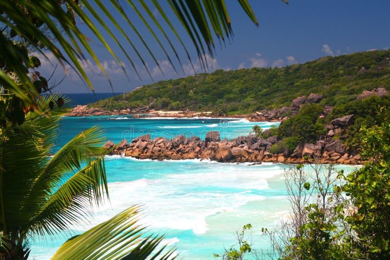 anse plaże kopią uroczystego losu angeles petit tropikalnego obrazy royalty free