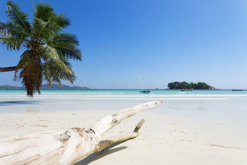 Anse Volbert, Seychelles photo libre de droits