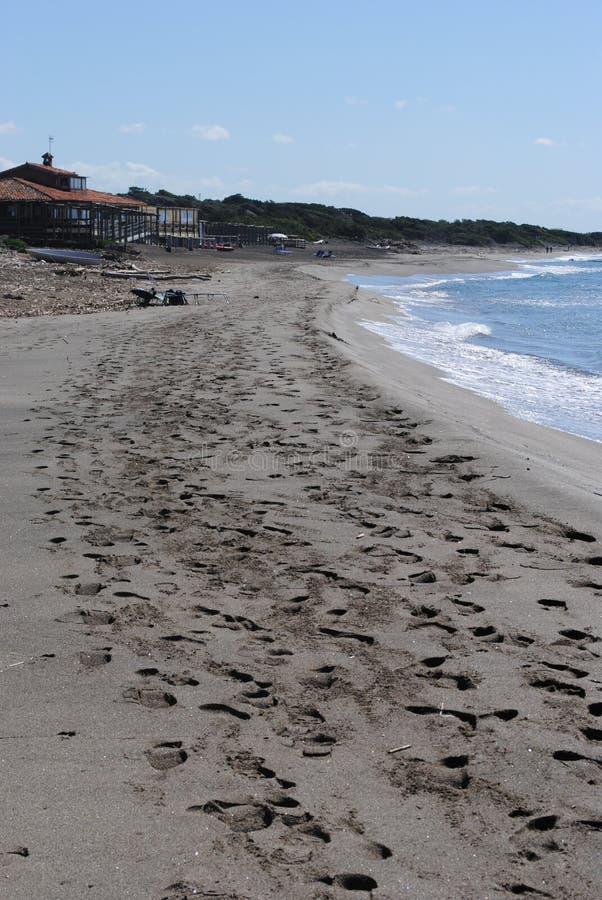 Ansedonia strand royaltyfria bilder