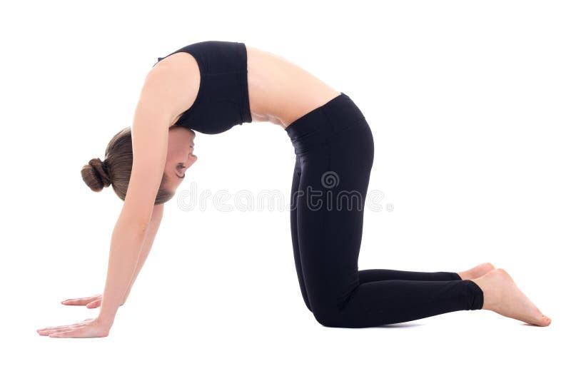 Anseendet för ung kvinna i yoga poserar arkivfoton