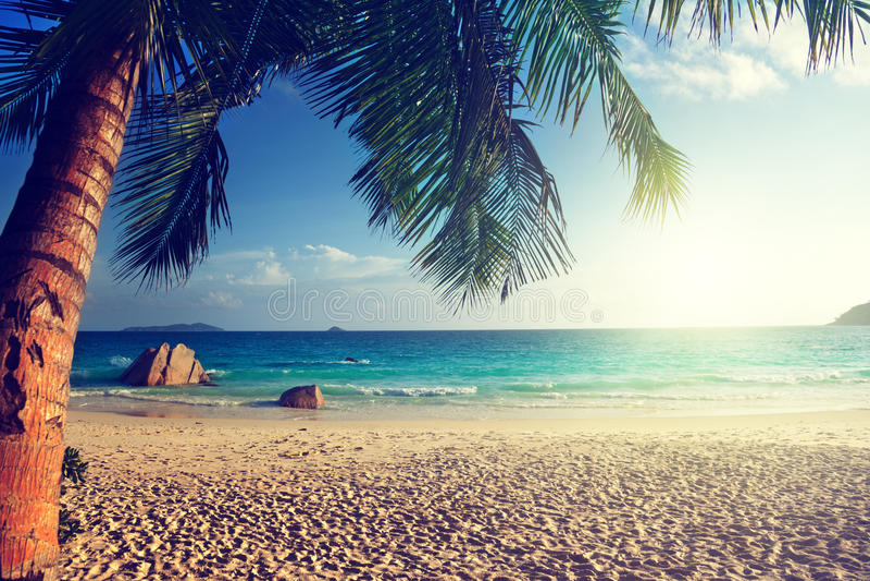 Anselazio strand, Praslin-eiland stock foto's