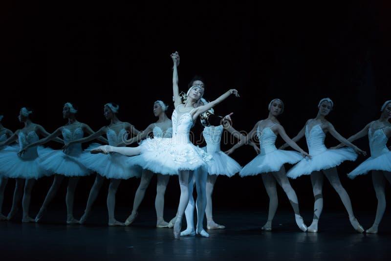 Ansiar para o amor-bailado O Lago das Cisnes fotos de stock royalty free
