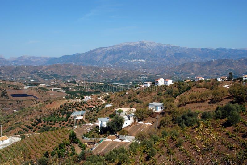 Ackerland und Berge, Iznate, Spanien. lizenzfreie stockbilder