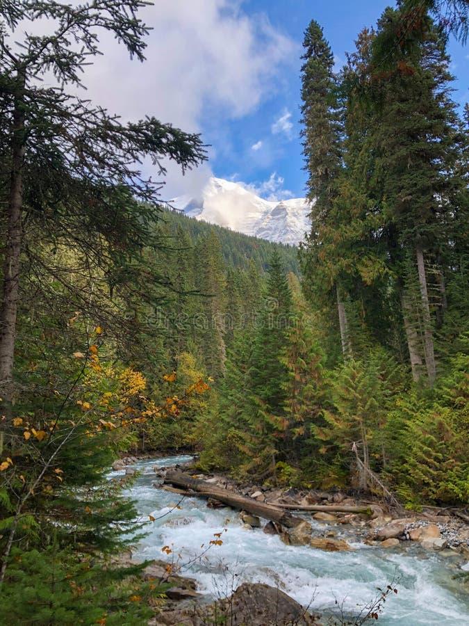 Ansicht über Berg Robson stockbild