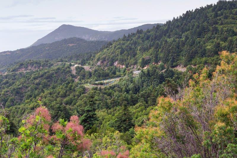 Ansicht über Berge und Bienenhaus nahe dem Dorf stockfoto