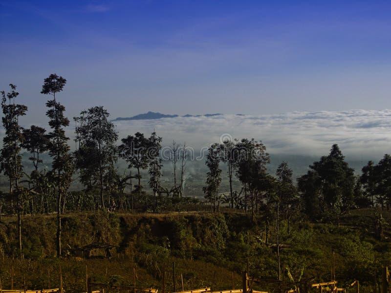 Ansicht über die Natur bei Temanggung zentraler Java Indonesia lizenzfreies stockfoto