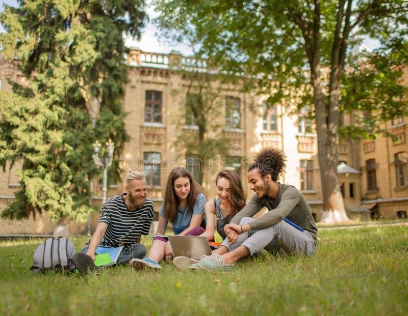 Ansicht über die netten Studenten, die auf Gras am sonnigen Tag sitzen stockbilder
