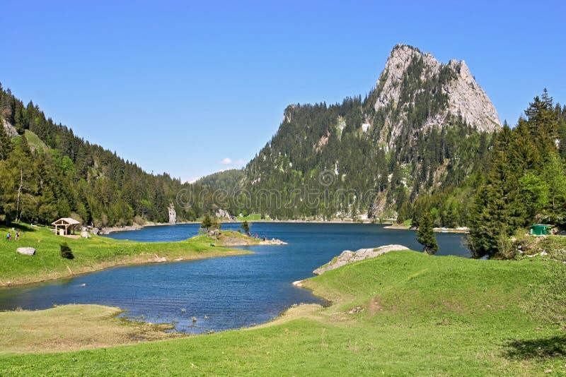 Ansicht über Lac de Taney in Vallais, die Schweiz lizenzfreie stockfotografie
