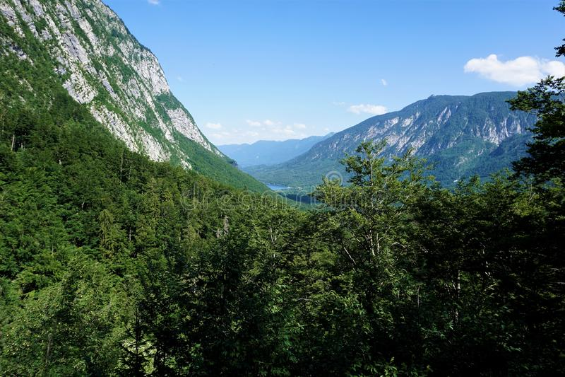 Ansicht über Wald zu Vogel-Berg und zum See Bohinj lizenzfreies stockbild