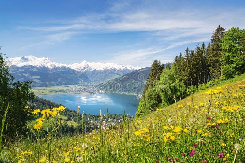 Ansicht über Zell morgens sehen, Österreich stockbild