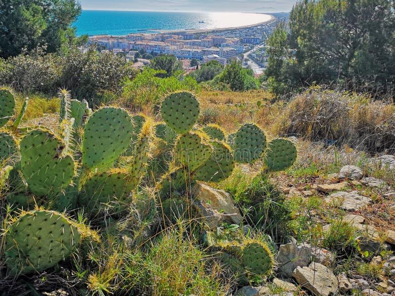 Ansicht bei Sete vom Berg von St. Clair stockfotos