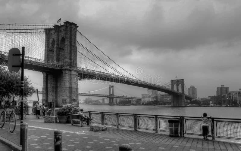Ansicht der brooklin Brücke und des Kindes, die de river schauen stockbilder