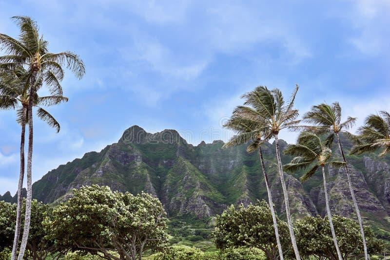 Ansicht der Gebirgsseite des regionalen Strand-Parks Kualoa an einem windigen Tag an O 'ahu, Hawaii, USA lizenzfreies stockfoto