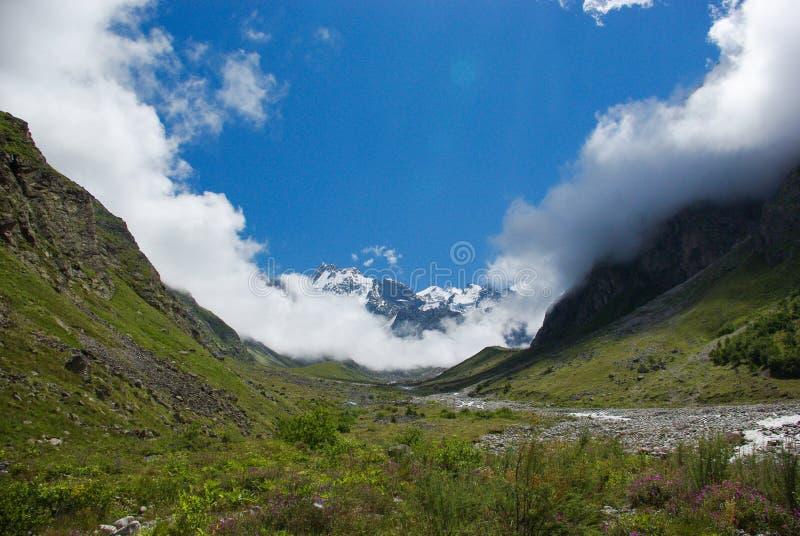 Ansicht der grünen schönen Schlucht, Russische Föderation, Kaukasus, lizenzfreies stockfoto