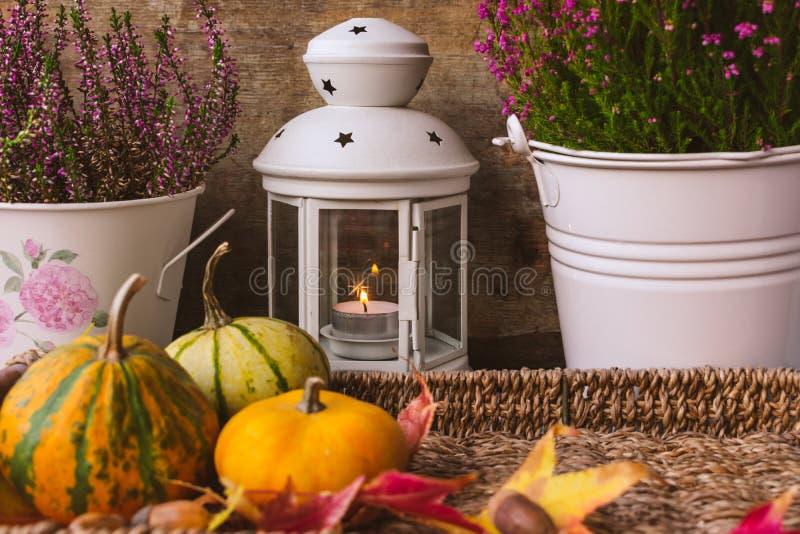 Ansicht der purpurroten Herbstblume, der Laterne, der Kürbise und der Blätter stockbild
